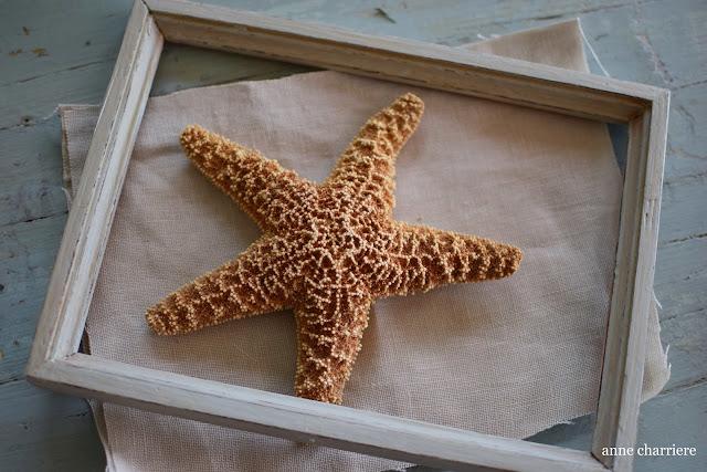 www.annecharriere.com, DIY estrellas de mar, marcos vacíos,