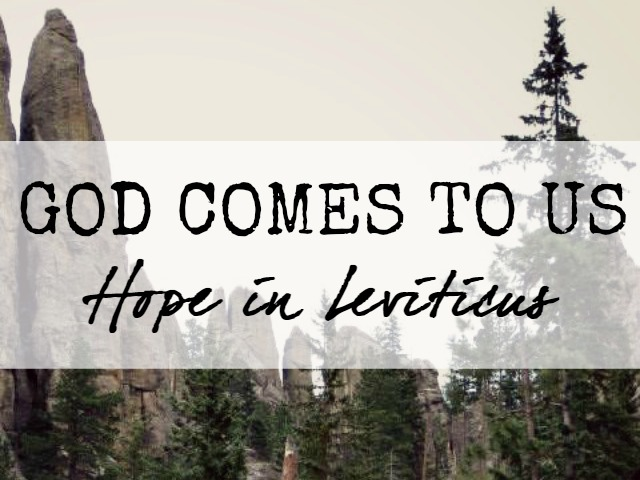 hope in Leviticus God Comes to us
