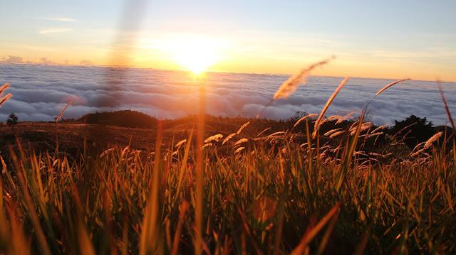 pemandangan gunung prau