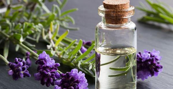 Minyak Lavender Bisa Menghapus Tato Secara Permanen dengan Cara Alami