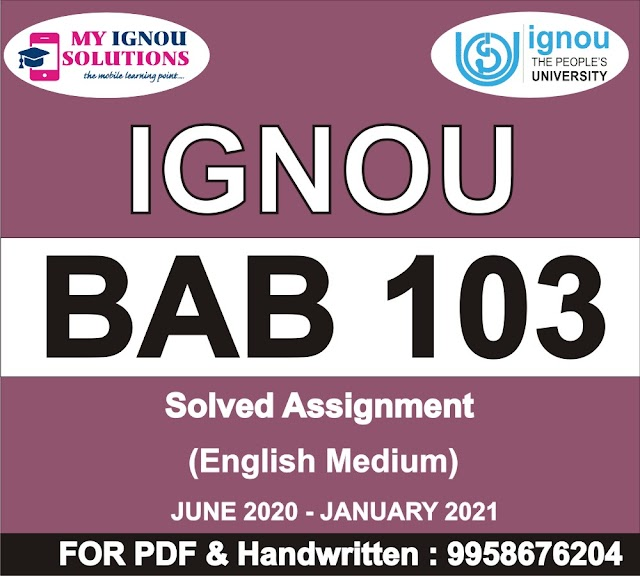 BAB 103 Solved Assignment 2020-21