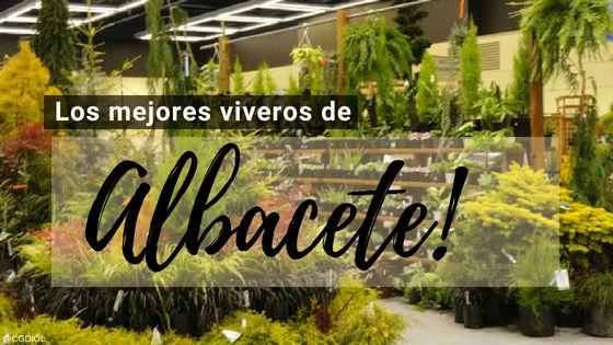 Comprar plantas online en Albacete