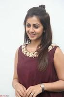 Nikki Galrani in a Brown Shining Sleeveless Gown at Nakshatram music launch ~  Exclusive 016.JPG