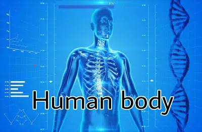 The things that you didn't know about your body