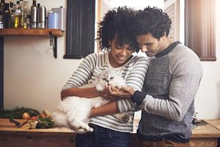 15 cosas que suceden cuando la persona con la que sales es dueña de un gato