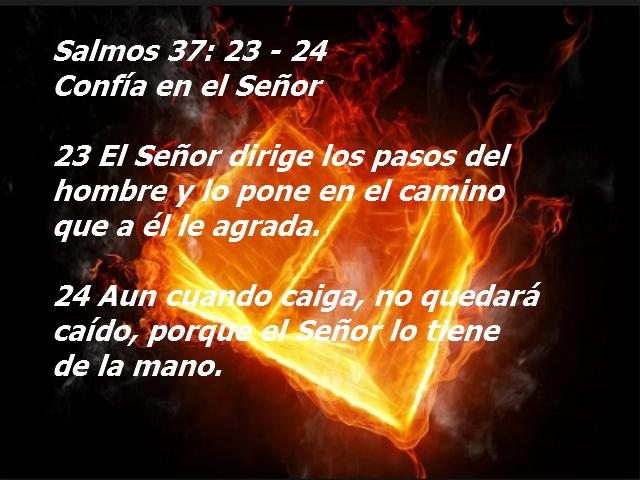 Lectura biblica de hoy y reflexion