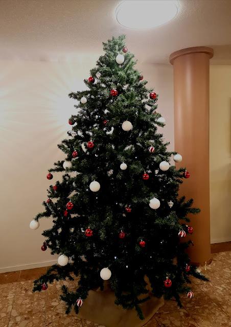 Koristelemamme valko- , punakoristeinen joulukuusi.