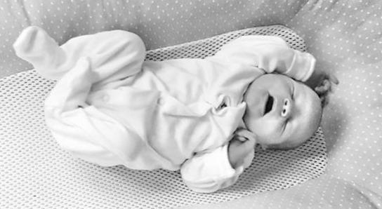 newborn baby asleep in purflo bed nest