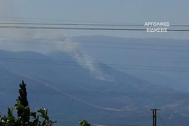 Υπό πλήρη έλεγχο η πυρκαγιά στο Ελληνικό Αργολίδας