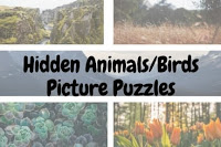 Hidden Animals/Birds Picture Puzzles for Kids