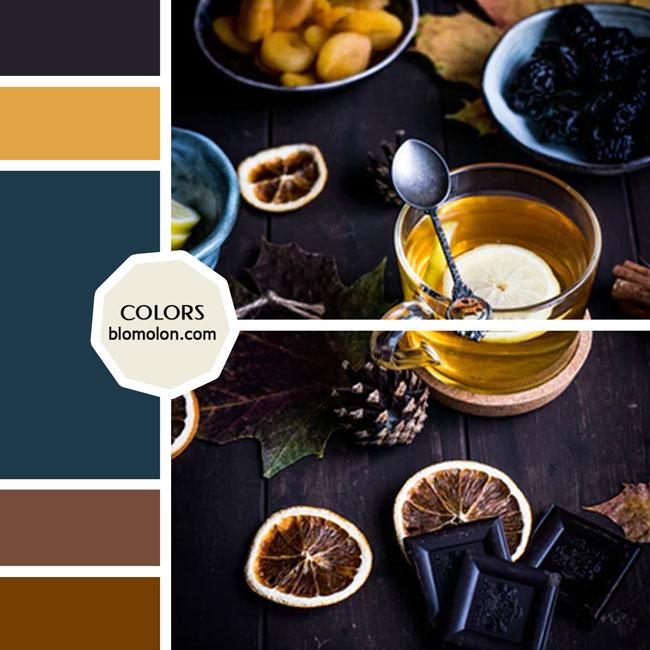 variedad_en_color_moodboard_48