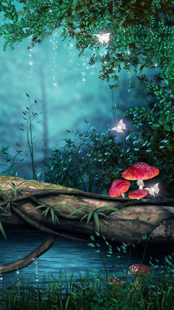 Floresta Encantada Papel De Parede Celular