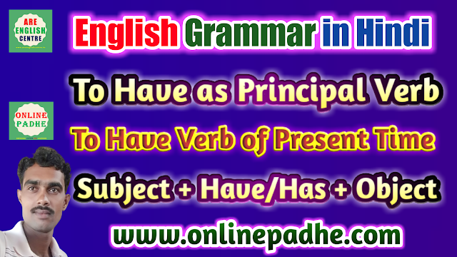 Use of Have/Has as Principal Verb in Sentence