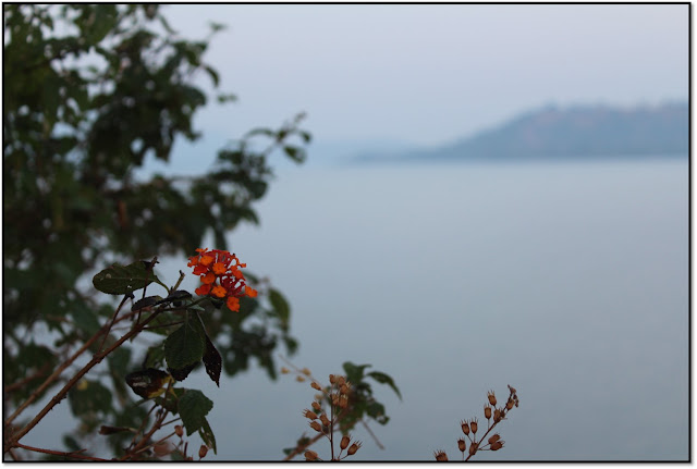 top 5 places to visit in bhandardara, arthur lake