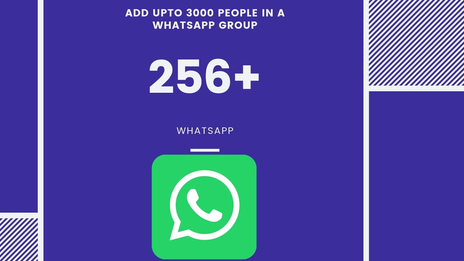3000 people in a WhatsApp Group
