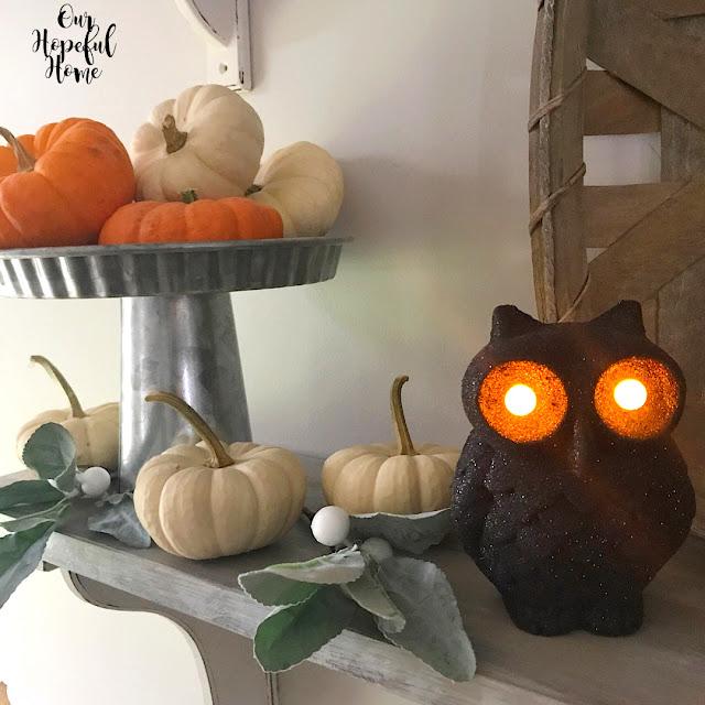 baby boo pumpkins lambs ear black glitter Halloween owl decor