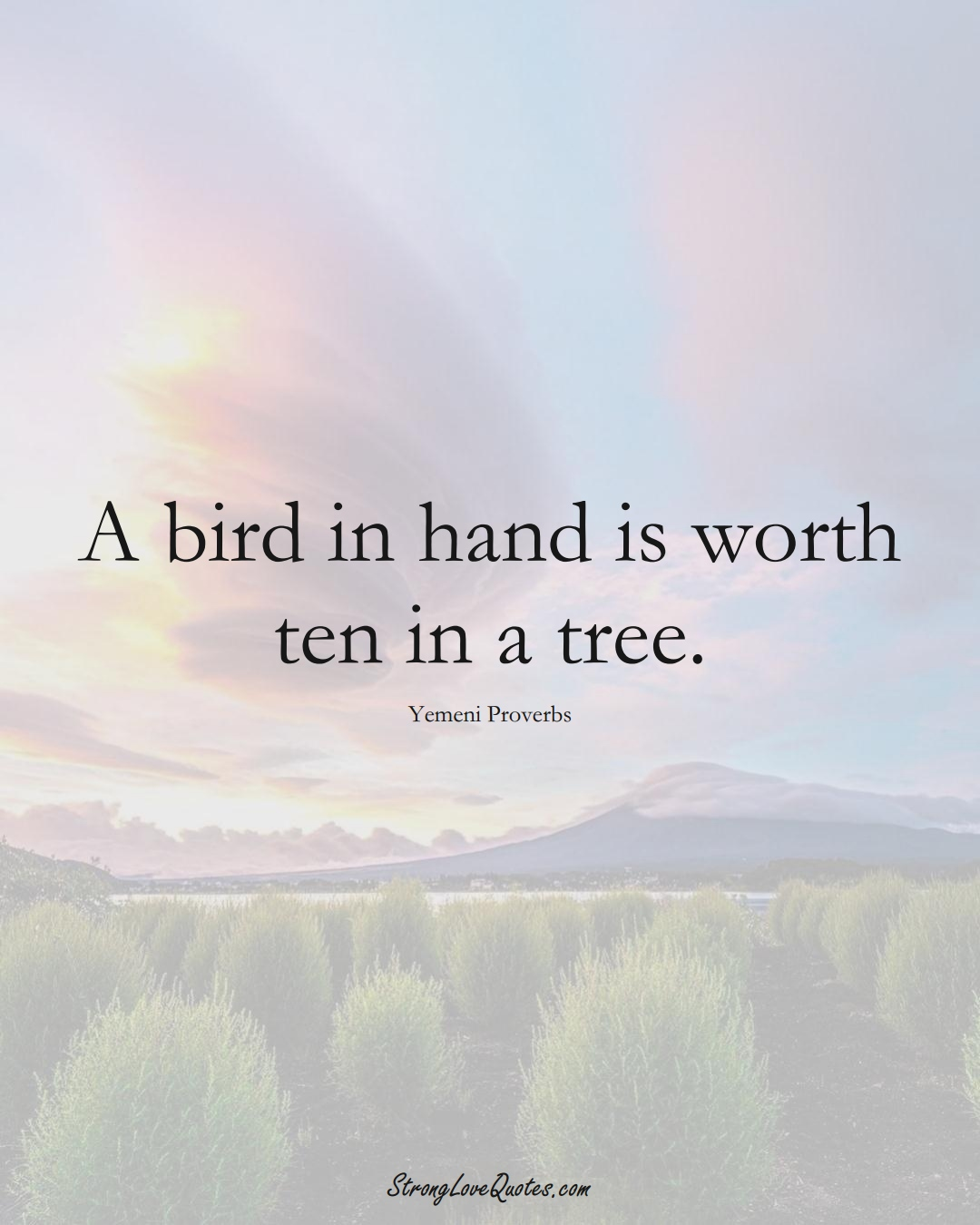 A bird in hand is worth ten in a tree. (Yemeni Sayings);  #MiddleEasternSayings