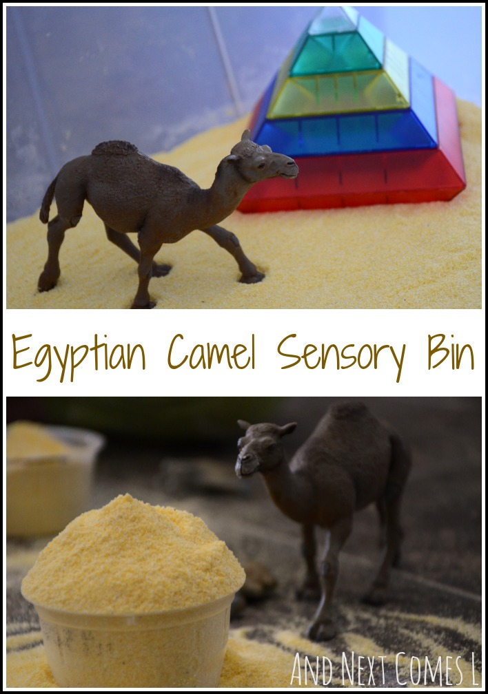 Super simple Egyptian desert sensory bin with camels from And Next Comes L