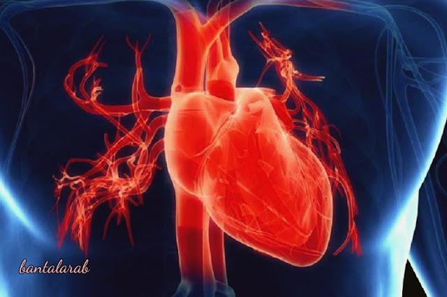 كيفية الوقاية من امراض القلب How to prevent heart disease