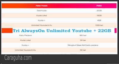unlimited tri 22GB