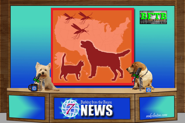 BFTB NETWoof News reports on April being Heartworm Awareness month