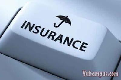 platform asuransi online