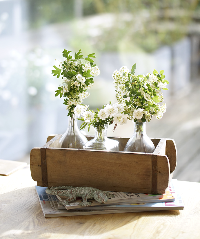 Weiße Blüten in Balsamicoflaschen, die in einer Holzschale stehen.