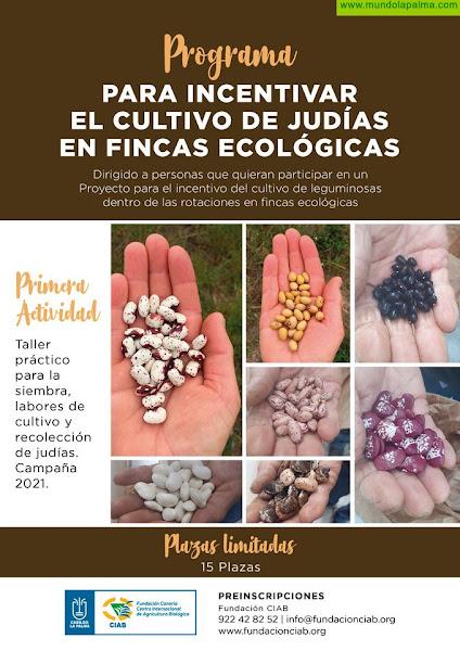 La Fundación CIAB lanza un programa para incentivar el cultivo de leguminosas en La Palma