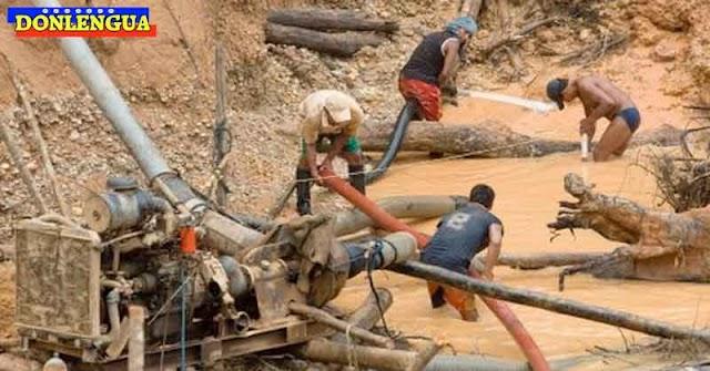 Profesores de Amazonas dejan su trabajo y se dedican ahora a la minería ilegal