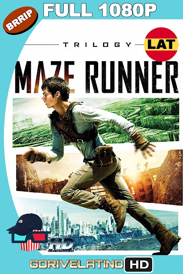 The Maze Runner (2014-2018) [Trilogía] BRRip 1080p Latino-Ingles MKV