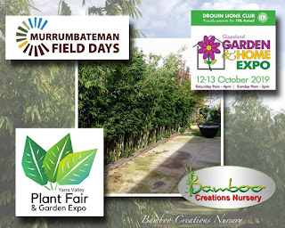 bamboo creations victoria attending gippsland garden and home expo and murrumbateman field days and yarra valley plant and garden expo