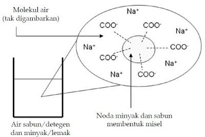 Bahan Kimia Pembersih Rumah Tangga