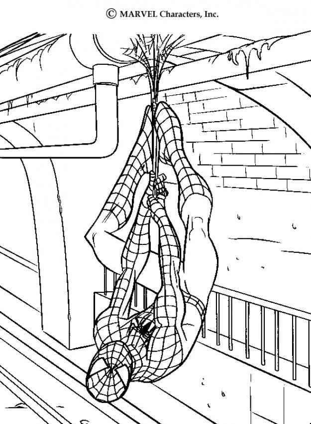 Desenhos Do Espetacular Homem Aranha Para Colorir