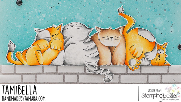 Stamping Bella Cling Stamps-Squishy Cats