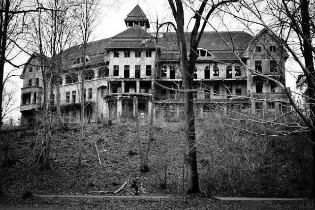 Haunted_hotel_jungle_2019