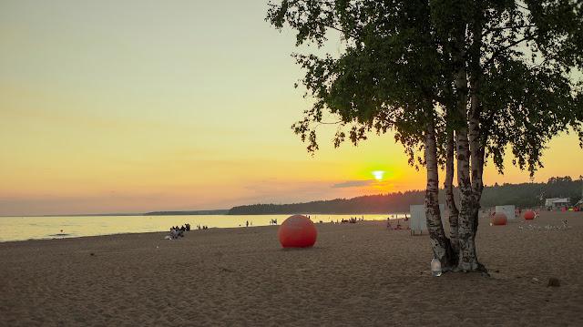 Сестрорецк пляж русский пляж береза на пляже закат Юг на Севере