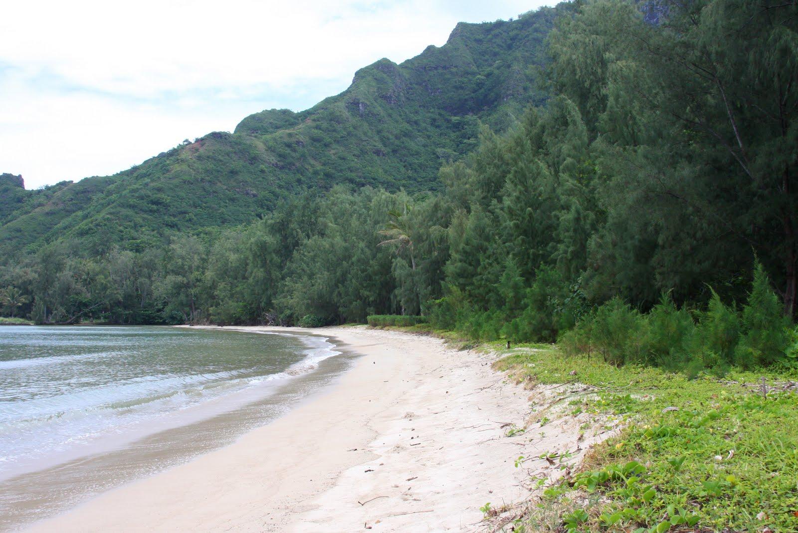 SUP Virginia: SUP Vacation Hawaii: Kahana River