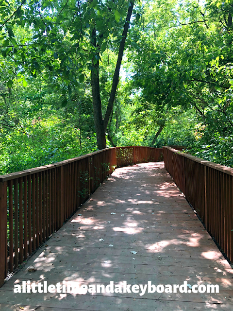 Walking along the boardwalk through the trees at Springbrook Nature Center in Itasca, Illinois