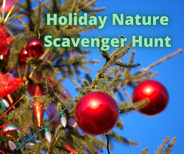 Holiday Nature Scavenger Hunt