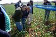 General Agrícola Nebulizador con Sistema NeoTwin