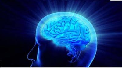 كيف يعمل عقل الإنسان؟