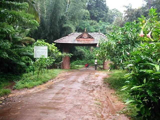 Silent Valley National Park Kerala