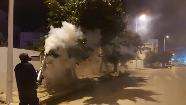 """قصور الساف : البلدية تنطلق في مقاومة """" الوشواشة """" وتسجيل حالة من الارتياح"""