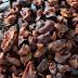 Nibs de Cacau - Um alimento poderoso que vai turbinar sua saúde
