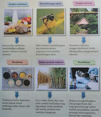 kepentingan biodiversiti