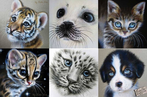 00-Kate-Mur-Fantasy-and-Realism-in-Paintings-and-drawings-of-animals-www-designstack-co