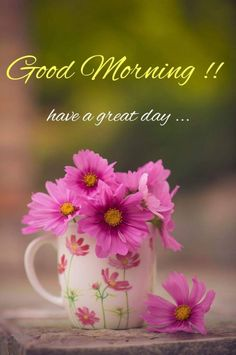 100+ Best Good Morning Messages For Whatsapp (2019) | Happy