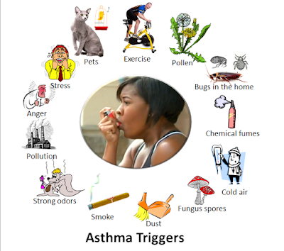 indoor Pollution is a major cause of Asthma