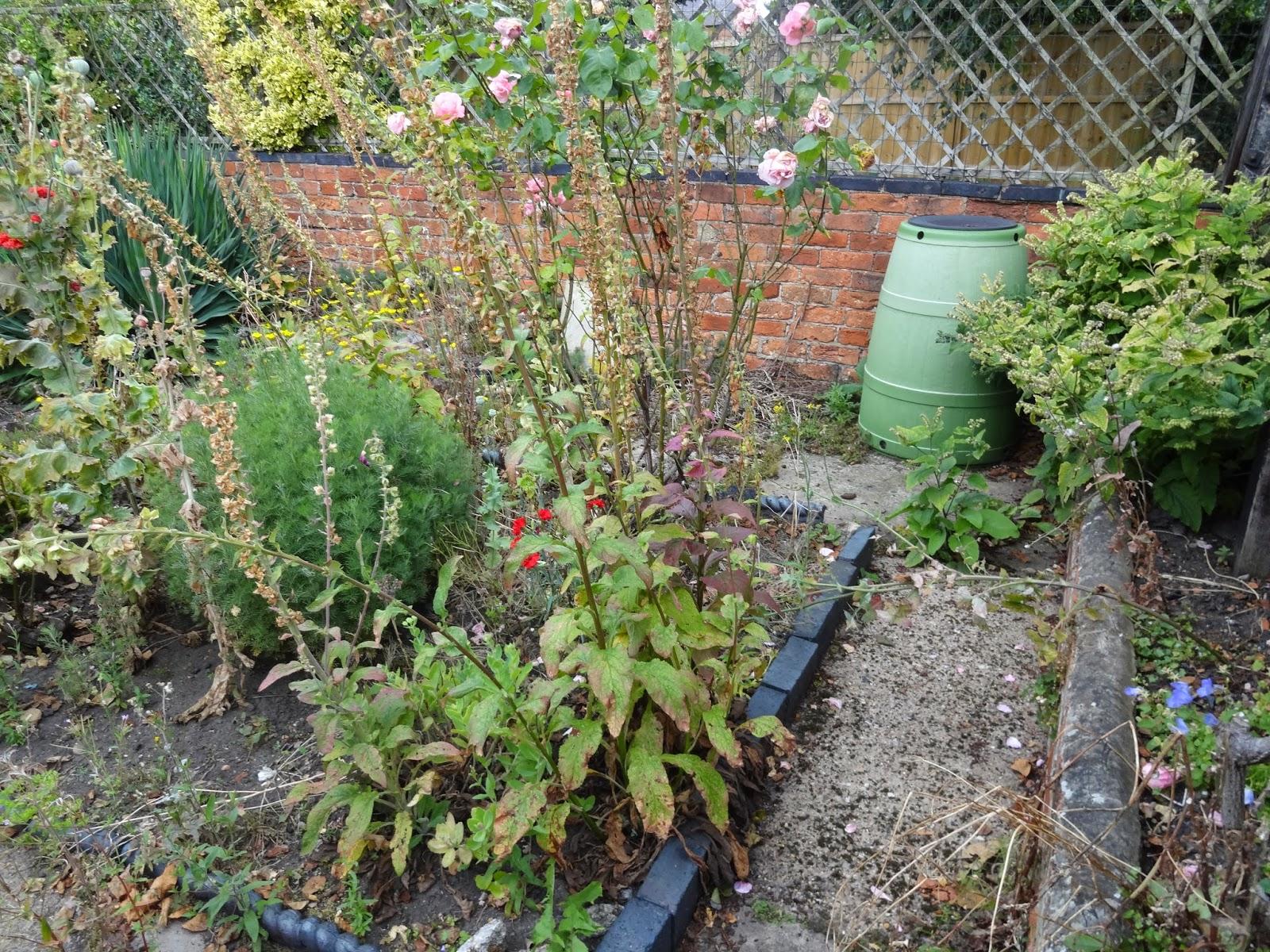 victorian garden renovation