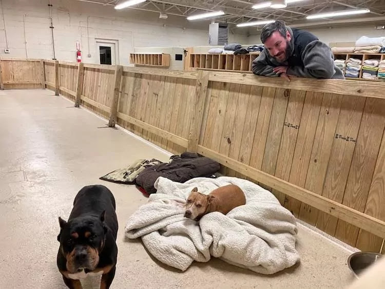 Heroic Homeless Man In Atlanta Rescues Every Animal From Burning Shelter Facility